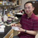 UVA Team IDs effect of chronic stress on fat cells