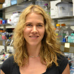 Melissa Kendall, PhD receives the ASM Merck Irving S. Sigal Memorial Award!